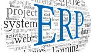 Before you customize your ERP, make sure you have a plan in place
